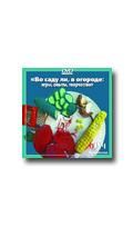 Фотосессия на DVD Рыжова Н.А. Во саду ли в огороде: игры, опыты, творчество