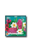 Фотосессия на DVD Мусиенко С.И. Разноцветие