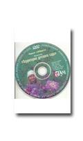 Фотосессия на DVD Рыжова Н. А. Территория детского сада